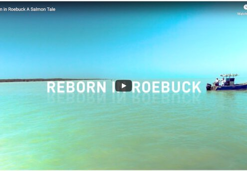 reborn in roebuck recfishwest